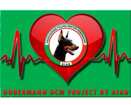 Dobermannn Heart project by AIAD